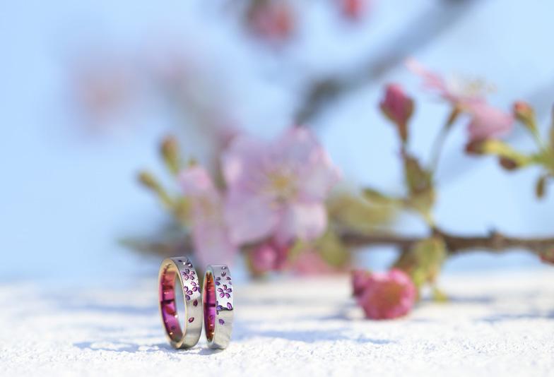 SORA舞桜情景つき