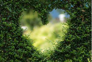 【静岡市】幸せ溢れるおふたりのお庭を想う結婚指輪♡