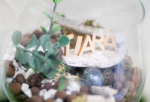 【冬の結婚指輪無料相談会2018 静岡】結婚指輪のデザイン・素材・ダイヤモンド・納期・価格など 無料相談フェア開催中