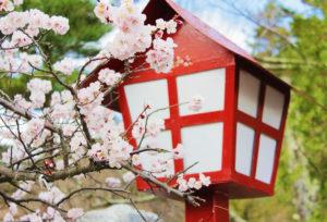【静岡市】和テイストな結婚指輪を探す!日本ならではの結婚指輪は彫が美しい