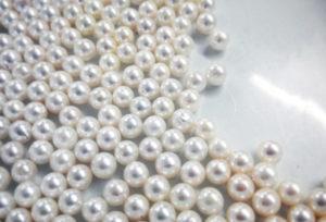 【静岡市】本物の良い真珠を探すなら・・・真珠専門でのネックレス選び。