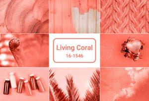 2019年流行色・トレンドカラーは「Living Coral」☆ピッタリ合うゴールド系結婚指輪BEST5【久留米市】