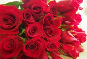 【大阪プロポーズ男子必見】女子がプロポーズに欲しい!AMOROSA(アモローサ)のDIAMONDROSE(ダイヤモンドローズ)