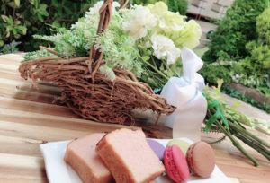 【静岡市】実際に見て良かった!リニューアルしたお庭でパーティーが出来るセントヨークから目が離せない