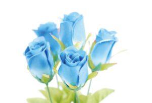 【浜松市】青色が好きな方必見!青いバラをモチーフにした結婚指輪とは?