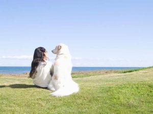 【浜松市】大好きな愛犬とずっと一緒にいれる!?結婚指輪とは?