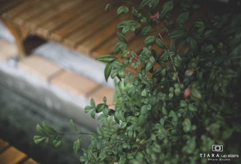 【静岡フォトスタジオ】大切な場所での前撮り撮影