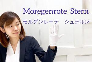 【動画】浜松市 Moregenrote(モルゲンレーテ)Stern シュテルン 流れるようなラインと煌めくダイヤで夜空を表現した婚約指輪