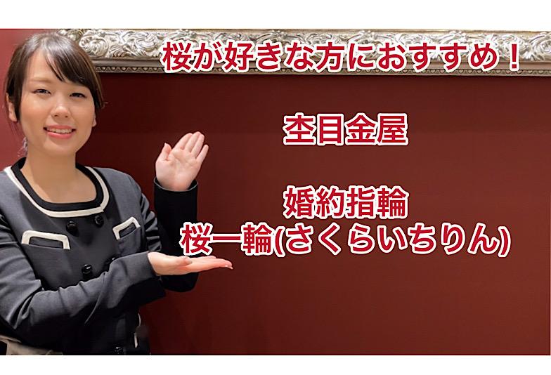 【動画】福井市 杢目金屋(もくめがねや)婚約指輪 桜一輪/さくらいちりん