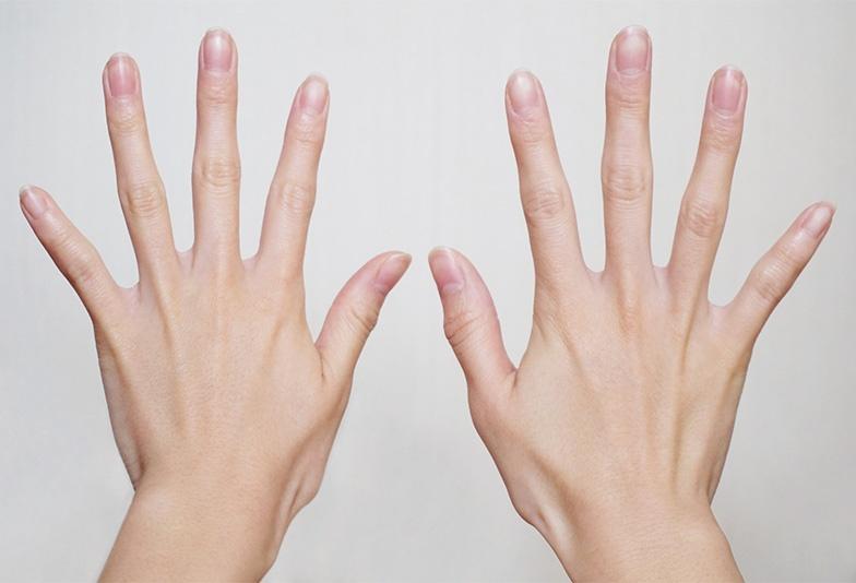 両手指の写真