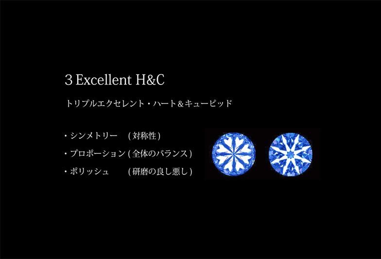 浜松 H&Cの要素