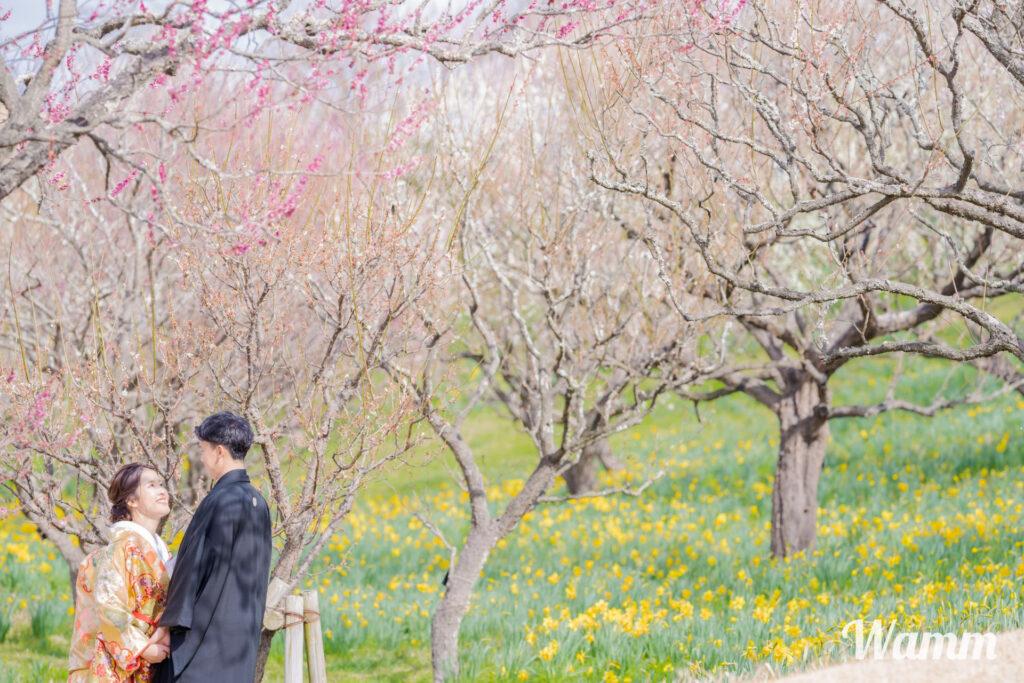 【静岡・浜松前撮り】フラワーパークの撮影が解禁されました!緑いっぱいの公園で撮影をするなら