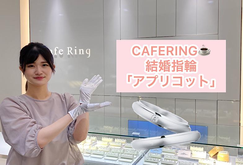 【動画】福井市CAFERING(カフェリング)結婚指輪『アプリコット』